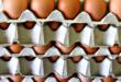 Eggs recalled over fipronil contamination.